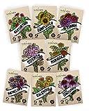 Flower Seeds Variety Pack - 100% Non GMO - Zinnia, Cosmos, Sunflower, Bachelor Button, Calendula, Nasturtium, Marigold, Coneflower for Planting in Your Garden