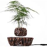 SUNBJ Levitacin magntica en Maceta, levitando la Planta de Planta Flotante de Aire Flotante bonsi decoracin Creativa Creativa para decoracin de Escritorio Interior