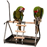 Northern Parrots Perchoir de table avec porte-jouets et...