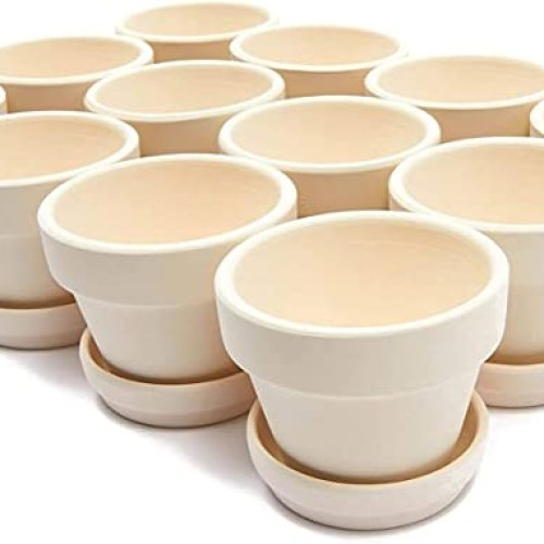 Mini Clay Terra Cotta Pots with Saucers for Succulents, Small Plants (White, 12 Pack)