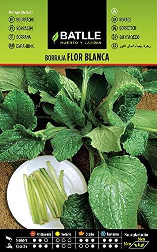 Semillas Hortícolas - Borraja Flor Blanca - Batlle