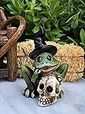 Miniature Dollhouse Fairy Garden Mini Halloween Frog Witch Skull Figurine
