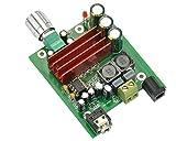AOSHIKE 8-25V 100W TPA3116 Subwoofer Digital Power Amplifier Board TPA3116D2 Amplifiers NE5532 subwoofer Plate Amplifier
