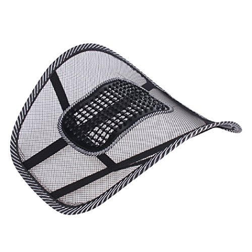 Naivete Mesh Ventilation Back Rest with Lumbar Support (Set of 2)