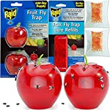 Raid Fruit Fly Trap (2 Pack Bundle) | 2 Lures + 2 Refills | Effective Fly Trap for Indoor Use | Fly Catcher and Gnat Trap for Kitchen & Dining Areas | Easy to Use & Safe Food-Based Lure Fly Catcher