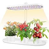 LVJING Indoor Garden...image