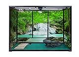 Carolina Custom Cages Terrarium, Extra-Tall Extra-Long 48Lx18Dx36H, Easy Assembly