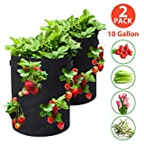 Tvird Strawberry Planting Bags 2 Pack 10 Gallon Planting Pouch Fabric Pots Premium Breathable Cloth Bags for Strawberry/Plant Container with Handles and Visualization Pockets(Black)
