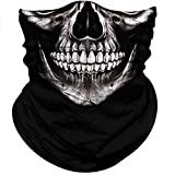 Obacle Motorcycle Face Mask Sun UV Dust Wind Protection Tube Mask Seamless Bandana Skeleton Face Mask for Men Women Bike Riding Cycling Biker Outdoor Festival (Skull Neat Teeth Black Face)
