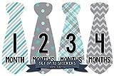 Months In Motion Monthly Baby Tie Stickers - Boy Month Milestone Necktie Sticker - Onesie Month Sticker - Infant Photo Prop for First Year - Shower Gift - Newborn Keepsakes