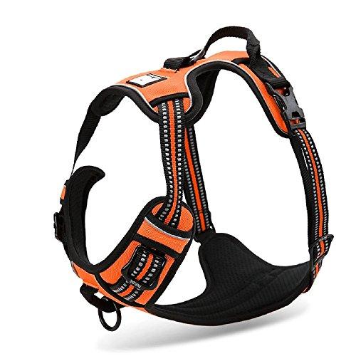 Chai's Choice Best Outdoor Adventure Dog Harness (X-Large, Orange)