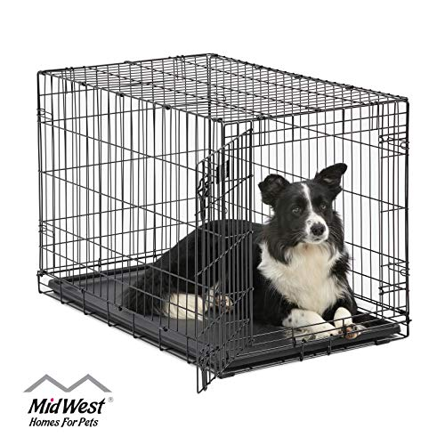Dog Crate | MidWest ICrate 36 Inch Folding Metal Dog Crate...