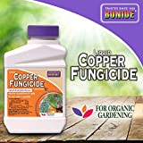Bonide Chemical Copper 811 4E Fungicide, 16 fl oz & (BND210) - All Seasons Horticultural and Dormant Spray Oil, Insecticide Concentrate (16 oz.)