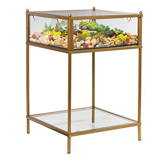 D'Eco Square Terrarium Display End Table
