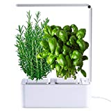 amzWOW Smart Garden - Cultivez vos herbes aromatiques - Potager d'Intérieur 100% Bio...
