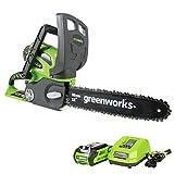 Greenworks 12-Inch 40V...