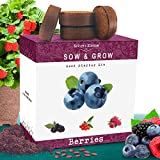 Nature's Blossom Fruit Growing Kit....