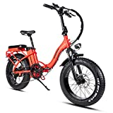 Mukkpet Rattan 750W 20 Inch Folding Electric Bikes for Adults, 48V/13AH Removable Lithium Battery with 7 Speed Brushless Motor for Adults Foldaway Sport Commuter Snow Off-Road Dirt E-Bikes
