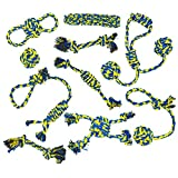 Jouets en corde pour chiens Dog Buddy. 10 jouets en corde solides...