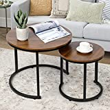 Amzdeal Coffee Table for Living Room, Set of 2