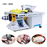Mini Table Jewelry Saws, Bench Buffer Electric Gem Lapidary Rock Grinder Polisher DIY Lathe Machine 0-10000r/min with Flexible Shaft 110V