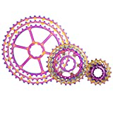 LEIPUPA 10 Speed Cassette 11-46 Teeth Freewheel Cluster for Mountain Bike, Road Bicycle, MTB, BMX and More - 21.5x2.15x7cm - Rainbow Color