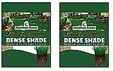 Jonathan Green 10622 Dense Shade Grass Seed Mix, 2 Pound