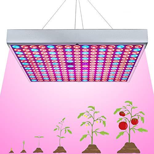 75W LED Grow Light for Indoor Plants Growing Lamp 225 LEDs UV IR Red Blue Full Spectrum Plant Lights Bulb Panel for Hydroponics Greenhouse Seedling Veg and Flower by Venoya