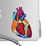 Beautiful Human Heart Artistic Full Color Post...