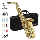 Eastar AS-II Commander Saxophone Alto Mi Bémol Laqué Or pour Débutants et Intermédiaires