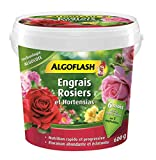 ALGOFLASH Engrais Algocote Rosiers & Hortensias, Action jusqu'à 6 mois, 600 g, ABAROS600
