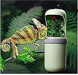 MBYGXX Bol d'eau Automatique Eau Potable Automatique Reptile...