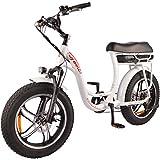 DJ Super Bike Step Thru 750W 48V 13Ah Power Electric Bicycle, Pearl White, LED Bike Light,...