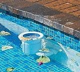 PoolSkim Pool Skimmer and Pool Cleaner