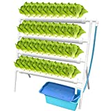 WEPLANT NFT Hydroponic Growing System 1 Layer 36 Holes with Timed Cycle Fertilizer, PVC-U Pipe Hydroponic Kit with Cups Sponge Pump