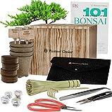 Kit de Iniciacin de Bonsi Premium + Libro 101 Consejos Esenciales y Kit de Herramientas Completo - en Caja de Regalo de Madera nica - Cultive Fcilmente 4 rboles a partir de Semillas