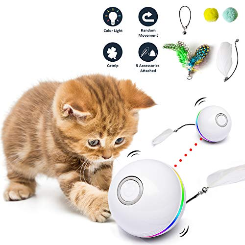 Juguetes para Gato interactivos con Luces LED y con Hierba Gatera