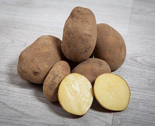 13 kg. Patata Agria / Especial para Freir - Selección Gourm