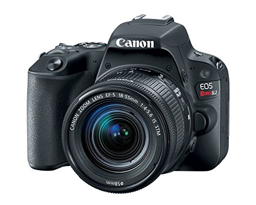 Canon EOS Rebel SL2 DSLR Camera with EF-S 18-55mm...