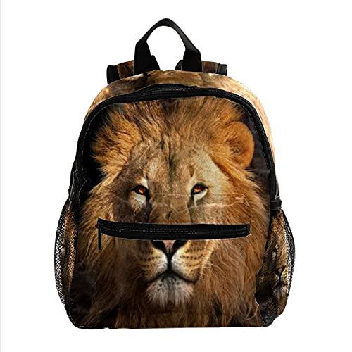 Liangbaiwan Mochila escolar para niñas niños mochila informal bolsa de viaje para senderismo Rey Leon con múltiples bolsillos