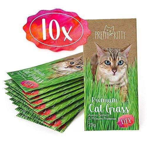 PRETTY KITTY 10x Semi di Erba gatta di qualità Superiore, 10 Sacchetti Pronto da 25g di Miscela di Semi per 100 vasi di Erba gatta
