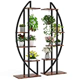 Tribesigns 5-Tier Plant Stand Pack of 2, Multi-Purpose Curved Display Shelf Bonsai Flower Plant Stand Rack for Indoor Garden, or Balcony, Home Use (Rustic Brown)