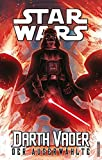 Star Wars Comics - Darth Vader (Ein Comicabenteuer): Der Auserwählte