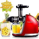 AMZCHEF Extracteur de Jus de Fruits et Lgumes Sans BPA Slow Juicer Presse  Froid Machine avec moteur silencieux/tasse  jus/brosse de nettoyage/adapt  tous les Fruits et Lgumes