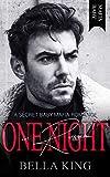 One Night in Russia: A Secret Baby Mafia Romance