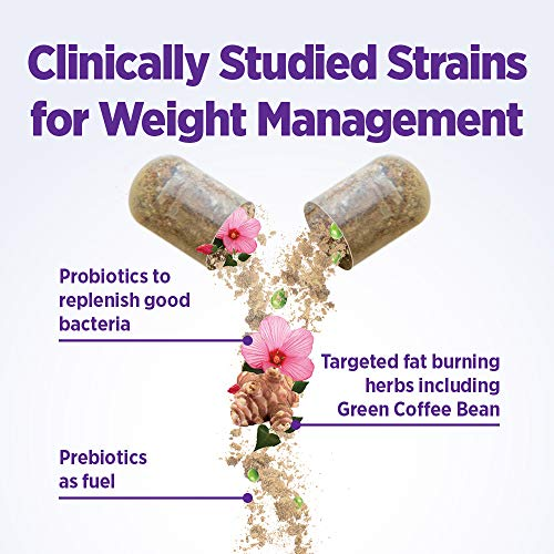 New Chapter Weight Management Probiotic, 60ct (2 Month Supply), Probiotics for Men & Women with Prebiotics and Probiotics + 100% Vegan + Soy Free + Non-GMO 3