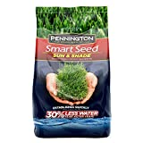 Pennington Smart Sun and Shade Grass Seed, 7 Pounds