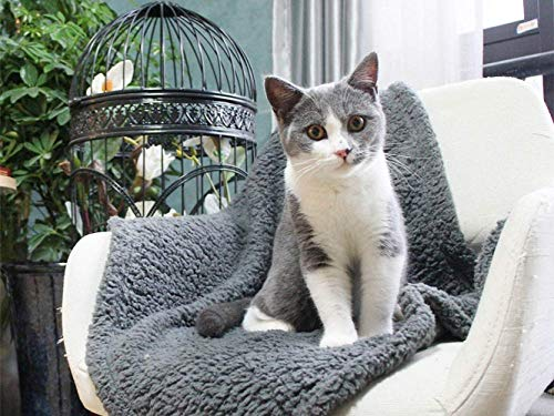 "furrybaby Premium Fluffy Fleece Dog Blanket, Soft and Warm Pet Throw for Dogs & Cats (Small (2432""), Grey Blanket)"