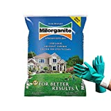 Milorganite 0636 Organic Nitrogen Fertilizer, Safer and Slow Release, for Lawn and Grass, Granular Nitrogen Fertilizer 32 lbs (Bundled with Pearsons Protective Gloves)