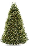 NATIONAL Tree COMPANY Dunhill Fir Tree with Dual Color LED Lights , 9 Feet